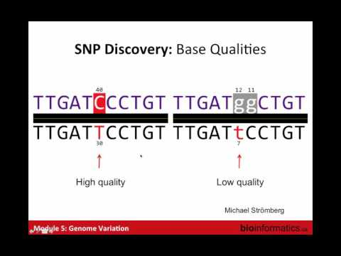 Genome Variation