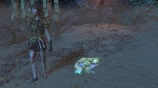 Path of Exile: Spectral Glass Toad Pet
