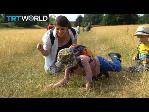 Outdoor Nursery: Woodland nursery offering alternative childcare