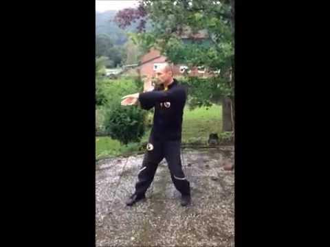 Dai-Sifu Axel Oschlies - Cham-Kiu-Form - Leung Jan Wing Chun