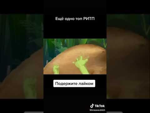 ПРИКОЛ ЛУНТИК