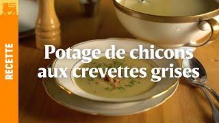 Potage de chicons aux crevettes grises