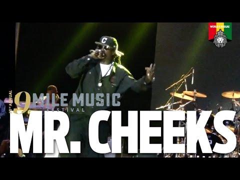Mr Cheeks Live at 9 Mile Music Festival 2016
