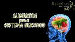 Alimentos para el sistema nervioso