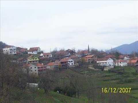 ayancık kütük köyü