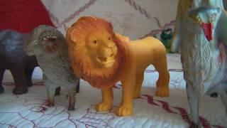 Животные и их звуки Animals and their sounds