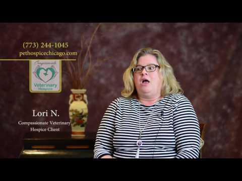 Palliative Care - Compassionate Veterinary Hospice Chicago