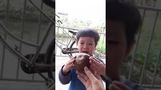 Gurukid Minh Đức Ngày 67/164 gt máy sấy tóc gà trống con vịt sticker
