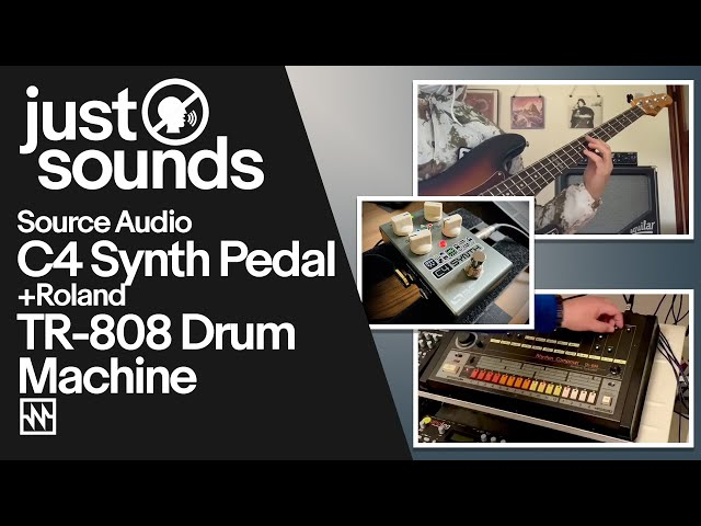 Just Sounds: Source Audio C4 Synth Pedal & Roland TR-808 Drum Machine
