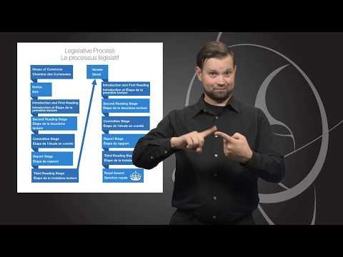 Vlog 2: Legislative Process (ASL)