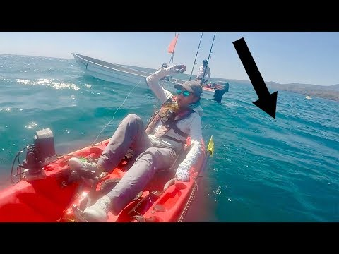 Chased By A Deadly Snake (Ocean Kayak Fishing)