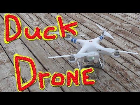 Ducks & The Peter Drone #147 Ducks For The Homeless