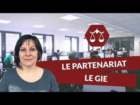Le partenariat : le GIE - Droit - digiSchool
