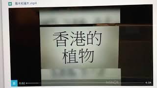 Publication Date: 2020-02-29 | Video Title: [信愛學校][停課不停學][常識][三下第二課 香港的植物]