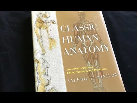 Classic Human Anatomy Book By Valerie L. Winslow