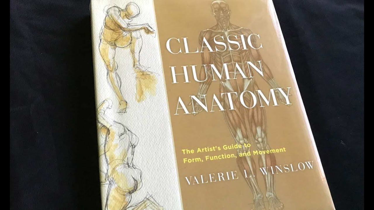 Classic Human Anatomy Book By Valerie L Winslow Youtube