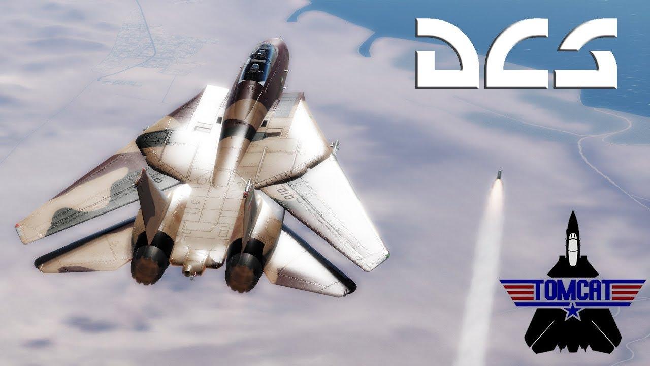 DCS: F-14 Tomcat Phoenix Aim-54 Vs. F-18 Hornet Amraam 120C