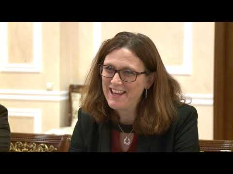 Întrevedere cu dna Cecilia Malmstrom