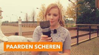 Paarden scheren | PaardenpraatTV