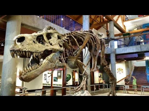 Delhi science museum.must visit (#1st vlog)