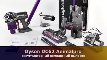 Обзор пылесоса Dyson DC62 Animalpro
