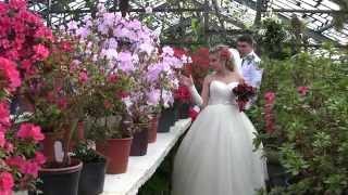 Свадебная видеосъёмка.Кривой Рог.