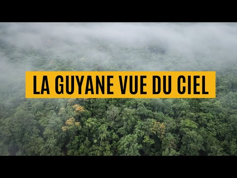 Somewhere in French Guiana (4K drone)