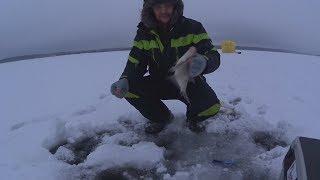 Ночь. Лед .Холод .Рыбалка.  Рузское водохранилище !