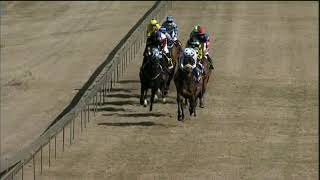 Vidéo de la course PMU PRIX BULL VALLEY