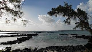 Trauminsel Mauritius Samba Rum blaues Meer Delfine und Musik Сон остров Маврикий
