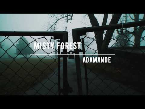 MISTY FOREST: FREE Cinematic Background for Documentary, Footages, Epic Emotional Piano