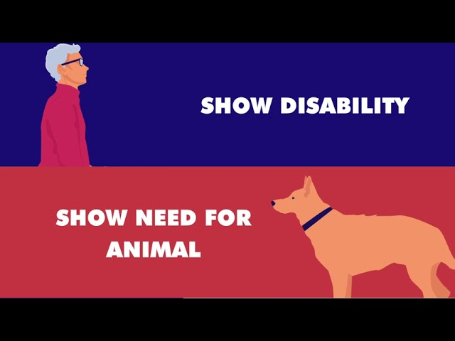 Legal Aid of NC Fair Housing Project- Reasonable Accommodations and Assistance Animals