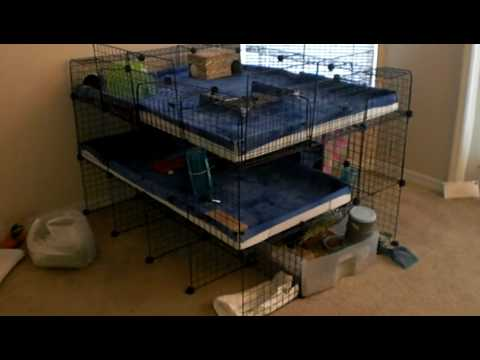Guinea pig mansion 3 story c c cage youtube for Making a c c cage