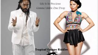 Cecile ft Tarrus Riley   Life Is So Precious   Gimme Likkle One Drop mixed by DEZMANSHOW