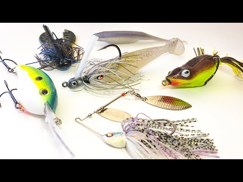 Where Do Bass Go After They Spawn? (And How To Catch Them During The Spring To Summer Transition)