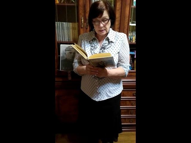 Изображение предпросмотра прочтения – ЛарисаСырых читает произведение «Василий Тёркин, О награде» А.Т.Твардовского