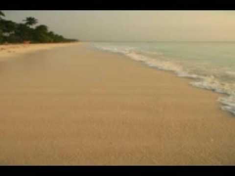הרפיה ודימיון מודרך - חוף הים