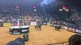 Matt Triplett Round 1. Crazy bull
