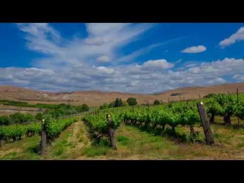 Yakima Valley Vineyards