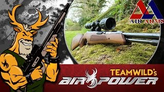 Air Gun Shooting & Review - Air Arms TX200