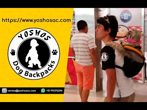 Yoshos Dog Backpack -Tammy