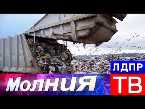 """Мега свалки. Во Владимирской области борются с """"Орловщиной"""""""