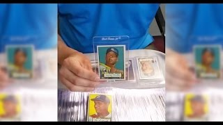 Fresh 1952 Topps Baseball Collection Purchase with Mickey Mantle