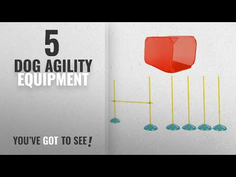 Top 5 Dog Agility Equipment [2018 Best Sellers]: Zip Zoom Indoor Dog Agility Starter Kit With Dog