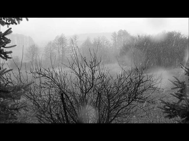 Havazás 2016 március