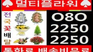 고객맞춤 O80-2250-2250 덕정동꽃배달 꽃집 화…