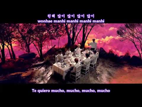 BTS 방탄소년단 - Blood Sweat & Tears MV Sub Español + Hangul + Rom