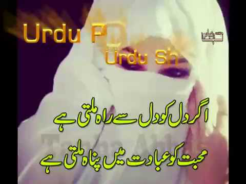 Best Nazam Tere Chor jane ki zid he Sad Nazam