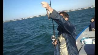 Рыбалка в Болгарии (июнь 2015)(Рыбалка в Болгарии (июнь 2015), 2015-06-29T16:12:08.000Z)