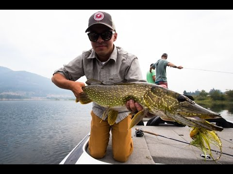 How To Set Up For Pike On The Fly